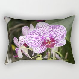 Longwood Gardens Orchid Extravaganza 23 Rectangular Pillow