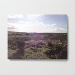 Views of Ireland Metal Print