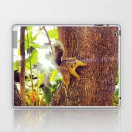 Super Squirrel Laptop & iPad Skin
