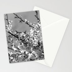 Spring Floral Black and White Stationery Cards