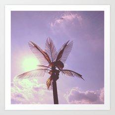 Palm Plane Art Print