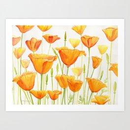 Blossom Poppies Art Print