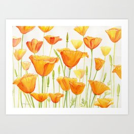Blossom Poppies Art Print