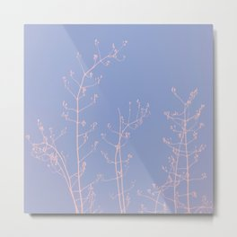 Serenity of Rose Jasmine Metal Print