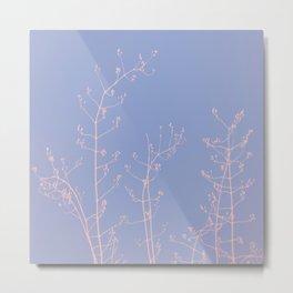 Serenity of Rose Jasmine Metal Print