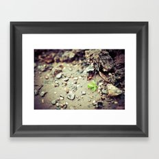 New beginning Framed Art Print