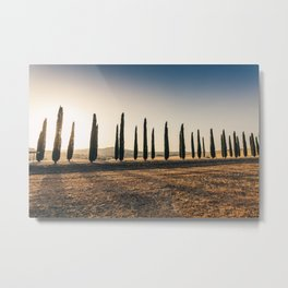 Valley in Tuscany at sunset Metal Print