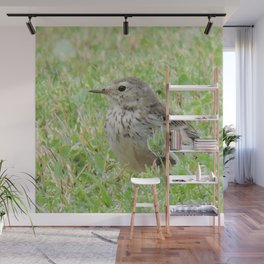 Pipit on the Lawn Wall Mural