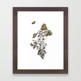 Insect Toile Framed Art Print