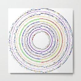 Genome Circles 3 Metal Print