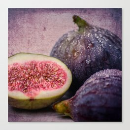 figs -blue 1x1 Canvas Print
