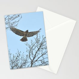 Hawk launch 31 Stationery Cards