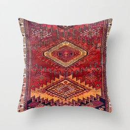 N200 - Berber Moroccan Heritage Oriental Traditional Moroccan Style Throw Pillow