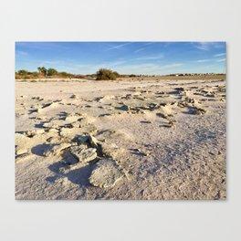 Desert Sea Canvas Print