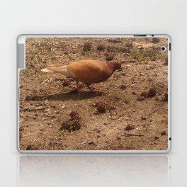 Pigeon (Falls the Shadow, 2) Laptop & iPad Skin