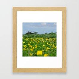 Flowers nature costa rica wild Framed Art Print
