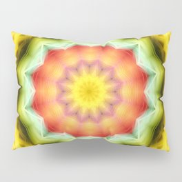 Prismatic Eye Mandala Pillow Sham