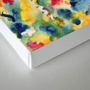 that dream Canvas Print