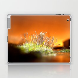 Face away from the oncoming storm Laptop & iPad Skin