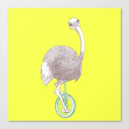 Ostrich on Monocycle Canvas Print