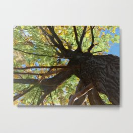 The Mighty Oak Metal Print