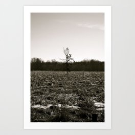 Empty Space in Kalamazoo, MI Art Print