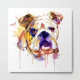 English Bulldog Head Metal Print