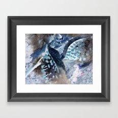 Milkweed Framed Art Print
