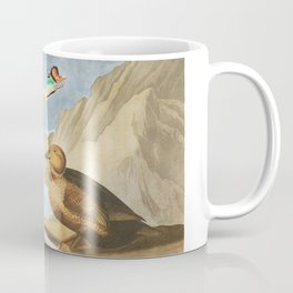 King duck, Birds of America, Audubon Plate 276 Coffee Mug