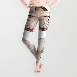 Butterfly Collection III Leggings