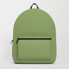 Solid Pale Iguana Green Color Backpack