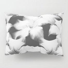 Dream Catcher Pillow Sham