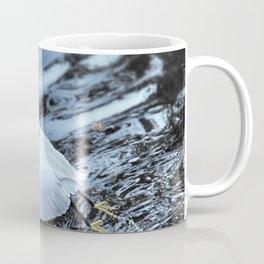 Little Egret taking off Coffee Mug