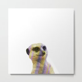 Abstract Meerkat #1 Metal Print