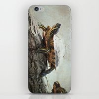 turtle iPhone & iPod Skins featuring turtle by Tanja Riedel