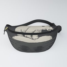 Polarized Fanny Pack