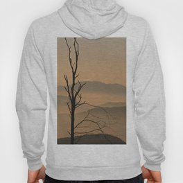 Landscape with Mountains - Tree and Fog Hoody