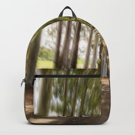 Spin Road Backpack