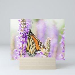 Monarch Butterfly 1 Mini Art Print