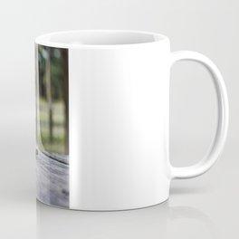 Empty Shell Coffee Mug