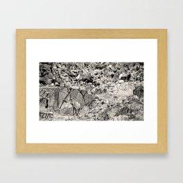 Pariah Framed Art Print