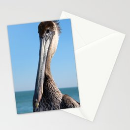 Pelican Stare Stationery Cards