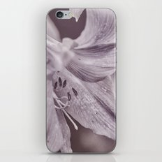 Petite iPhone & iPod Skin
