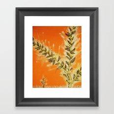 Orangy Framed Art Print