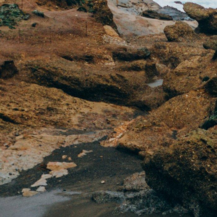 Big Sur Coast Leggings
