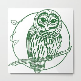 Forest Lover's Owl Metal Print
