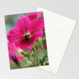 Clearwing Hummingbird Moth at Work in a Patch of Petunias (Photography: Critters and Creatures) Stationery Cards