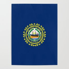 New Hampshire State Flag Poster