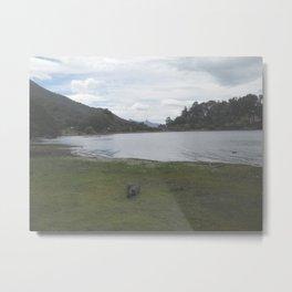Patagonia II Metal Print