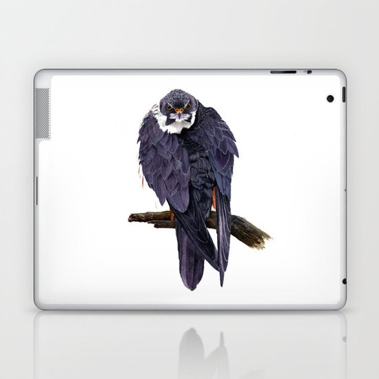 Hobby Laptop & iPad Skin